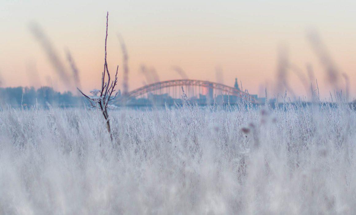 Nijmegen Ooy 2016