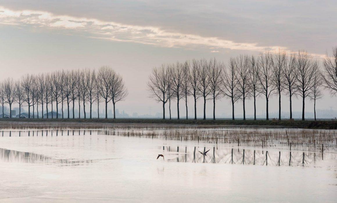 Waterrijk Park Lingezegen 2018