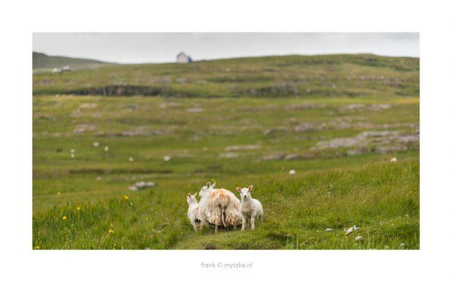 Berneray, Outer Hebrides Schotland 2018